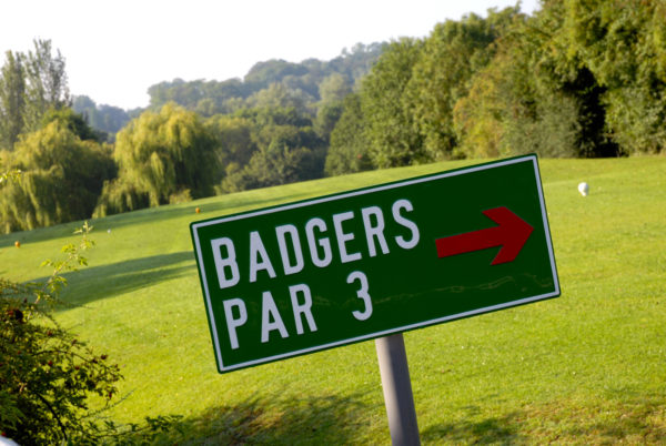 Badgers 6th